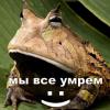 AikmirФотография %s
